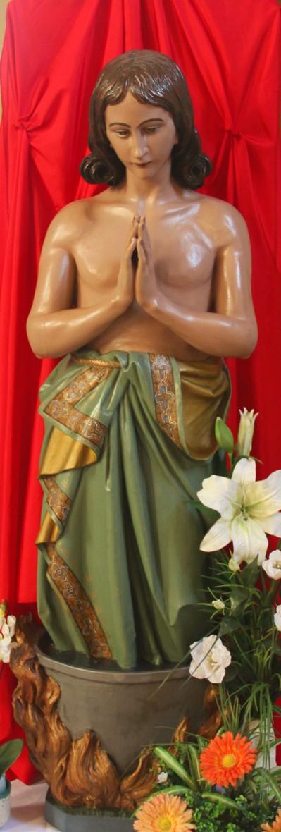 sv Vid kip
